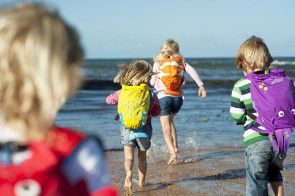 PaddlePak Blowfish børn strand